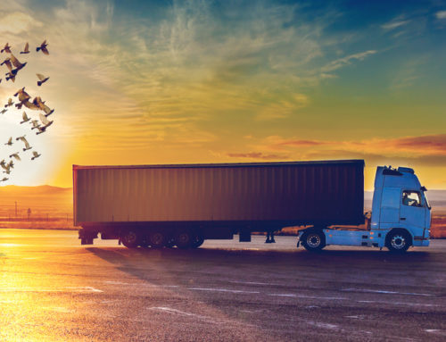 Digital Pricing Models for Road Freight